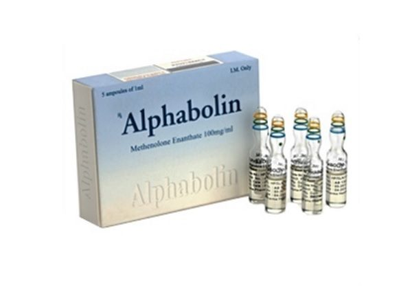 Alphabolin 5 ampoules (100 mg/ml)